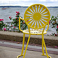 Mellow Yellow by Linda Mishler