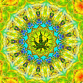 Mellow Yellow Mandala by Diana Haronis