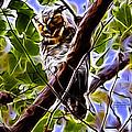 Melpomene - Great Horned Owl -2124 - Fractal - S