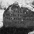 memorial stone for the dead english on Culloden moor battlefield site highlands scotland by Joe Fox