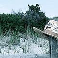 Memories Of Sea Isle by Nancy Patterson