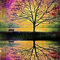 Memory Over Water by Tara Turner