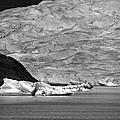 Mendenhall Glacier Bw by Marilyn Wilson