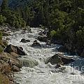 Merced River In Yosemite by Tim Mulina