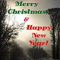 Merry Christmas And Happy New Year 2 by DeeLon Merritt