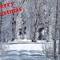 Merry Christmas Card 1 by DeeLon Merritt