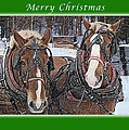 Merry Christmas Horses At Sawmill by Michael Peychich