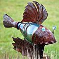 Metal Fish by Loriannah Hespe