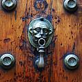 Mexican Door Decor 13  by Xueling Zou