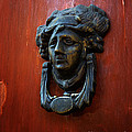 Mexican Door Decor 2  by Xueling Zou