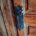 Mexican Door Decor 3  by Xueling Zou