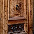 Mexican Door Decor 5  by Xueling Zou