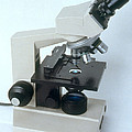 Microscope by Science Source