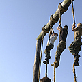 Midshipmen Tackle The Ropes Portion by Stocktrek Images