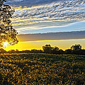 Midwest Sunset by Brian Lambert