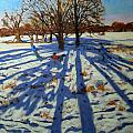 Midwinter by Andrew Macara