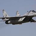 Mig-29 Of The Slovak Air Force by Timm Ziegenthaler