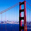 Mighty Golden Gate by Stephen Whalen