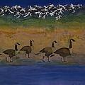 Migration Series Geese 2 by Carolyn Doe