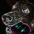Miko - Glow by Priscilla De Mesa