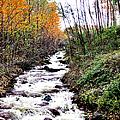 Mile Long Rapids by Art Dingo