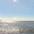 Milford Sound Nz by C H Apperson