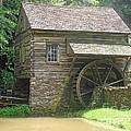 Mill At Cuttalossa Farm by Louise Peardon