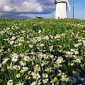 Millisle, County Down, Ireland by Richard Cummins