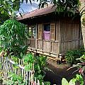 Minahasa Traditional Home 1 by Mark Sellers