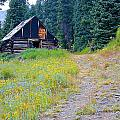 Miners Cabin  by Walt Jackson