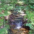 Mini Waterfall At Lower Tahquamenon Falls Park by Jennifer  King