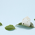 Miniature House And Leaves (ecology Image) by sozaijiten/Datacraft
