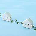Miniature Houses And Wire Vine (ecology Image) by sozaijiten/Datacraft