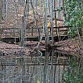Mirrored Bridge by David Campbell