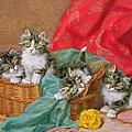 Mischievous Kittens by Daniel Merlin