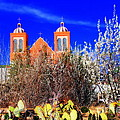 Mission In Silver City Nm by Susanne Van Hulst