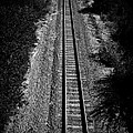 Missouri Pacific Railway by Mauricio Jimenez