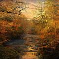 Misty Autumn Morning by Jai Johnson