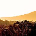Misty Autumn Sunrise by Thomas R Fletcher