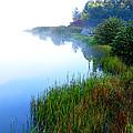 Misty Morning Big Ditch Lake by Thomas R Fletcher