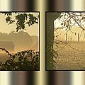 Misty Morning by Ericamaxine Price