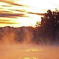 Misty Sunrise by Tikvah's Hope