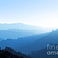 Misty Valley by Carlos Caetano
