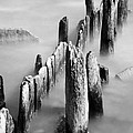 Misty Wooden Posts by Jonah Anderson