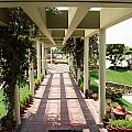 Mix Of Light And Shade Under A Partially Covered Pathway With Pillars by Ashish Agarwal