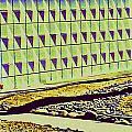 Mod Wall Tree Shadow by Randall Weidner