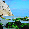 Moens Clif Nature by Colette V Hera  Guggenheim