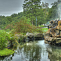 Mohonk Koi Pond On A Rainy Day by Donna Lee Blais