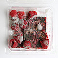 Moldy Raspberries by Photo Researchers