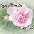 Mom Birthday Greeting Card - Pink Rose by Mother Nature